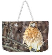 Red-shouldered Hawk Front View Square Weekender Tote Bag