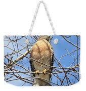 Red Shouldered Hawk In Tree Weekender Tote Bag