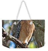 Red-shouldered Hawk On Branch Weekender Tote Bag
