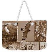Red-shouldered Hawk Poster - Sepia Weekender Tote Bag