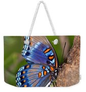 Red Spotted Purple Butterfly Weekender Tote Bag