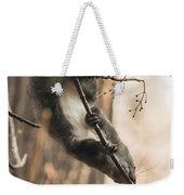 Red Squirrel - Balance Weekender Tote Bag