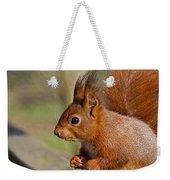 Red Squirrel 2 Weekender Tote Bag