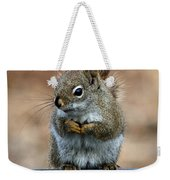 Red Squirrel On Patio Chair II Weekender Tote Bag