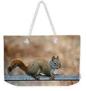 Red Squirrel On Patio Chair Weekender Tote Bag