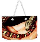 Red Tail Baby Boa - Snake - Pet Weekender Tote Bag