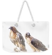 Red Tail Hawk Pair On White Background Weekender Tote Bag