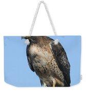 Red-tailed Hawk Monterey California  2008 Weekender Tote Bag