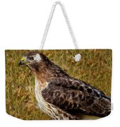 Red Tailed Hawk Close Up Weekender Tote Bag