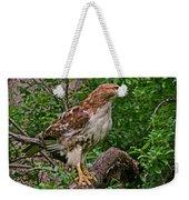 Red Tailed Hawk Weekender Tote Bag