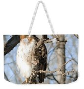Red-tailed Hawk Looking Weekender Tote Bag