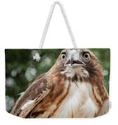 Red-tailed Hawk Square Weekender Tote Bag by Bill Wakeley