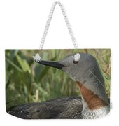 Red-throated Loon With Day Old Chicks Weekender Tote Bag