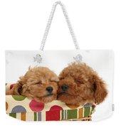 Red Toy Poodle Puppies Weekender Tote Bag