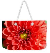 Red Tubular Flower Weekender Tote Bag