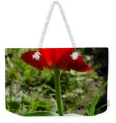Red Tulip On The Green Background Weekender Tote Bag