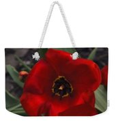 Red Tulip Pair Weekender Tote Bag