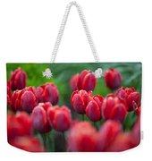 red tulips II Weekender Tote Bag