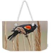 Red-wing Blackbird Weekender Tote Bag