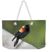 Red-winged Blackbird Display Weekender Tote Bag
