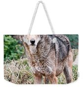 Red Wolf Alert Weekender Tote Bag