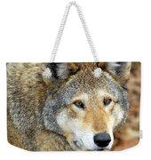 Red Wolf Portrait Weekender Tote Bag