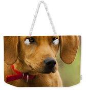 Redbone Coonhound - Man's Best Friend The Hound Dog Weekender Tote Bag