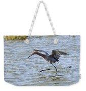 Reddish Egret Canopy Feeding Weekender Tote Bag
