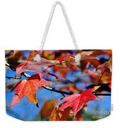 Reds Of Autumn Weekender Tote Bag
