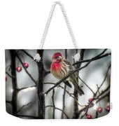 Reds Of Winter Weekender Tote Bag
