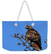 Red-tailed Hawk Weekender Tote Bag