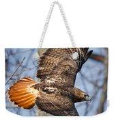 Redtail Hawk Square Weekender Tote Bag by Bill Wakeley