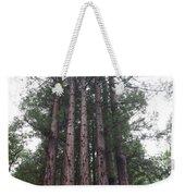 Redwood Fairy Ring Close Weekender Tote Bag