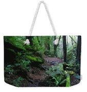 Redwood Forest Scene 1 Weekender Tote Bag