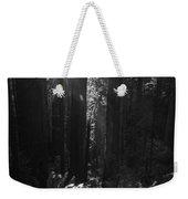 Redwood Sunburst Monochrome Weekender Tote Bag