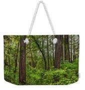 Redwoods 2 Weekender Tote Bag