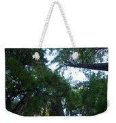 Redwoods II Weekender Tote Bag