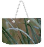 Reeds And Rain Weekender Tote Bag