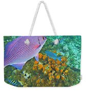 Reef Life Weekender Tote Bag by John Malone