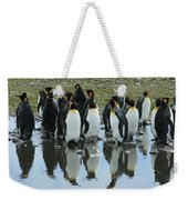 Reflecting King Penguins Weekender Tote Bag