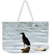 Reflection Of The Green Heron Weekender Tote Bag