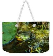 Reflections Of A Bullfrog Weekender Tote Bag