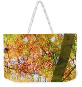Reflections Of A Colorful Fall 001 Weekender Tote Bag