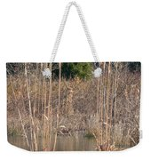 Reflections Of Winter Past 2014 Weekender Tote Bag