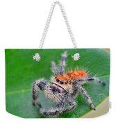 Regal Jumping Spider Weekender Tote Bag