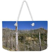 Regrowth Since Eruption Mt Saint Helens Weekender Tote Bag