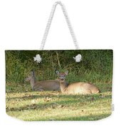 Relaxing In The Sun And Shade Weekender Tote Bag