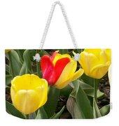 Renegade Tulip Weekender Tote Bag