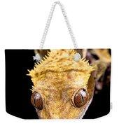 Reptile Close Up On Black Weekender Tote Bag