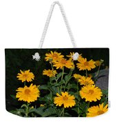 Resplendent Yellows Weekender Tote Bag